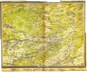 142-1919 (Копировать)